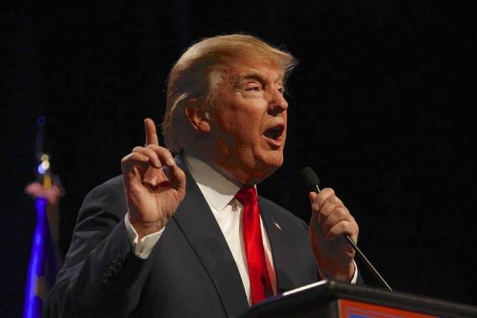 Trump Fights to Get Back on Social Media Platforms