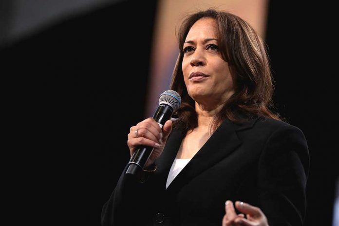 Kamala Harris Insults World Leader With Ridiculous Act