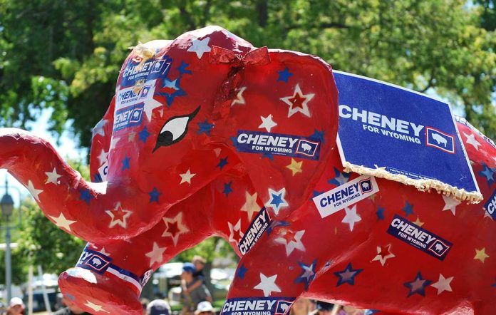 Liz Cheney Political Career in Jeopardy as Challengers Rise